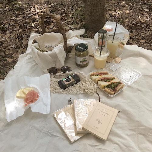秋ピクニック