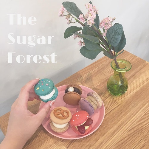 The Sugar Forest