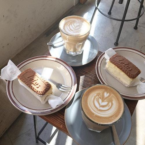 NOG COFFEE BREWERS