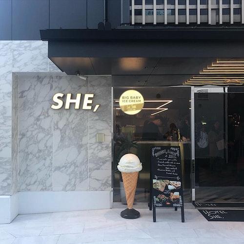 HOTEL SHE,
