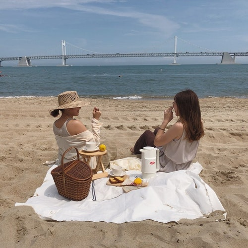 韓国ピクニック